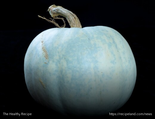 A blue pumpkin, generally only found at Fall Farmers Markets