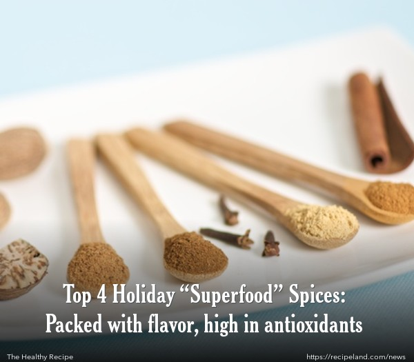 Fall and Winter Seasonal Spices, Nutmeg, Cloves, Ginger and Cinnamon