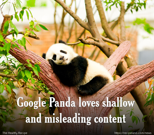 Google Panda loves shallow and misleading content