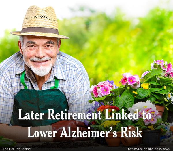 Later Retirement Linked to Lower Alzheimer's Risk