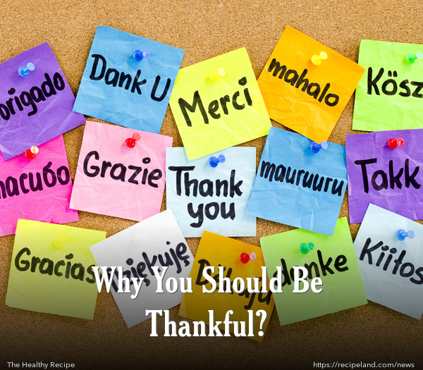 Why You Should Be Thankful?