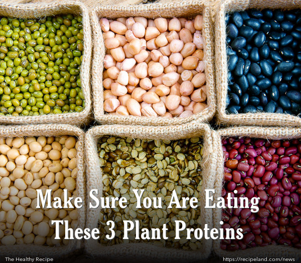 Make Sure You Are Eating These 3 Plant Proteins