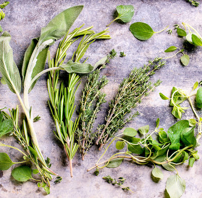 Use These 5 Herbs and Spices to Boost Brain Power
