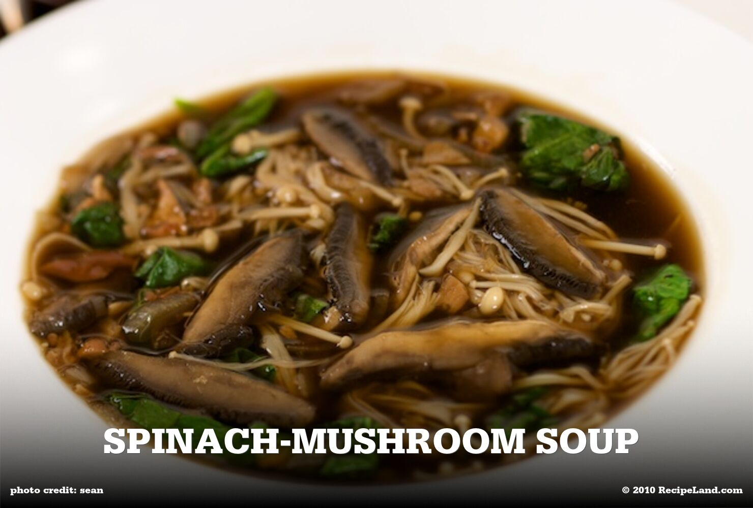 Spinach-Mushroom Soup