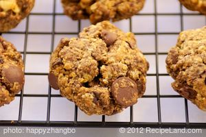 Neiman Marcus Oatmeal Chocolate Chip Cookie