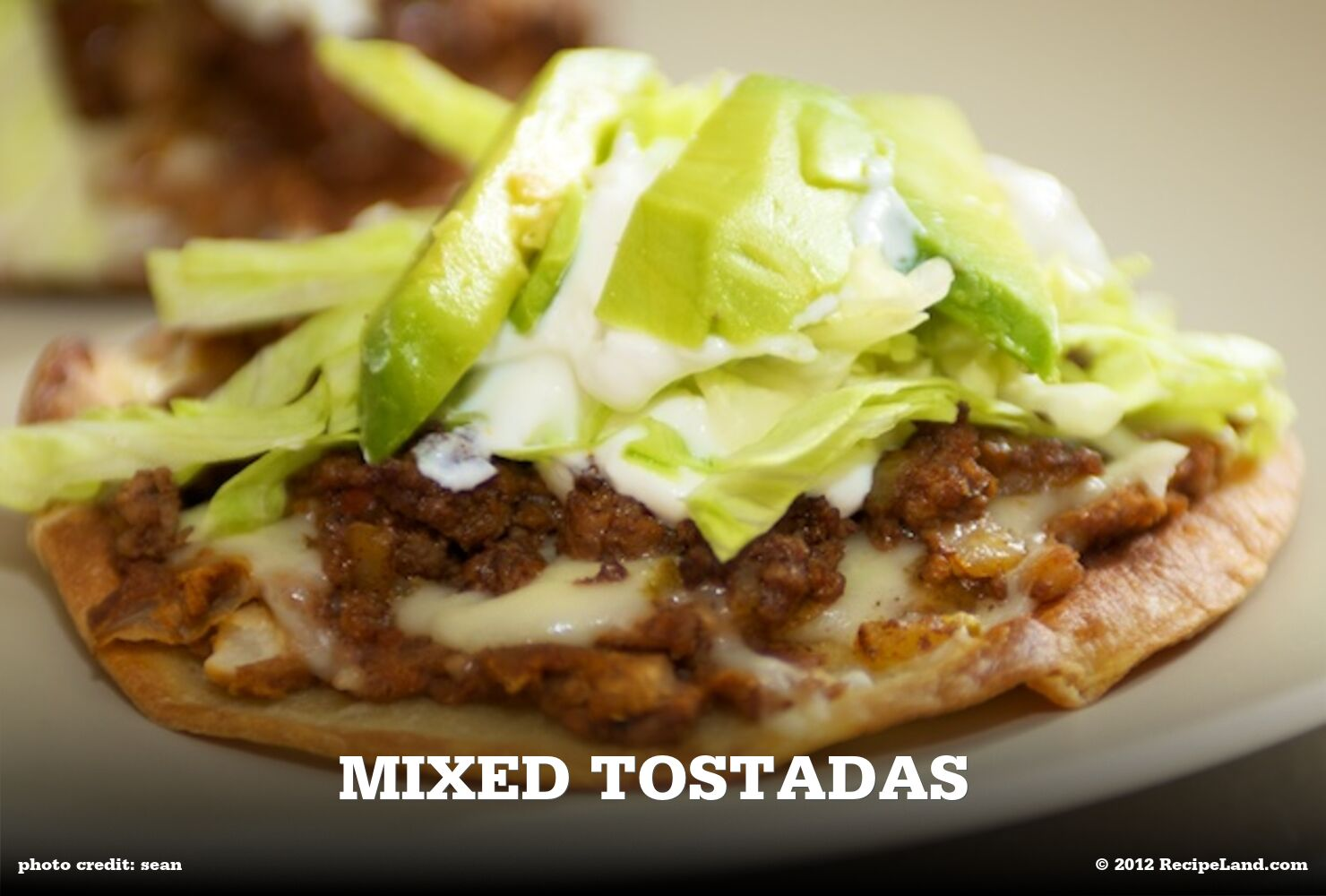 Mixed Tostadas