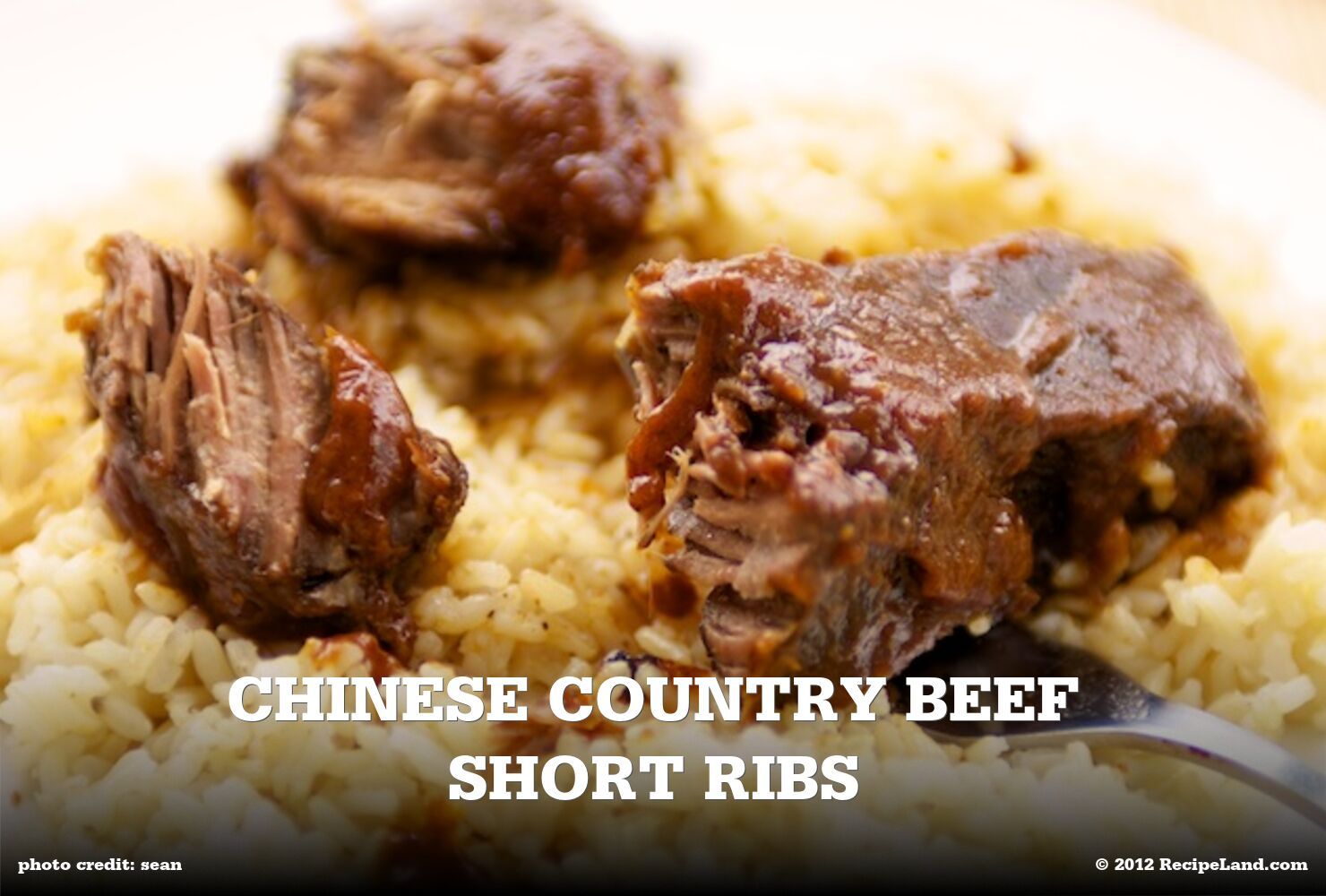 Chinese Country Beef Short Ribs