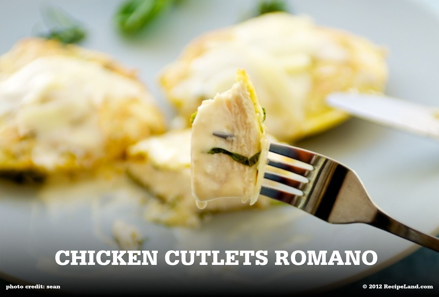 Chicken Cutlets Romano