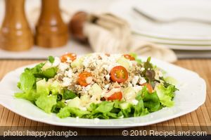 Couscous, Lentil and Mixed Green Salad with Garlic Dijon Vinaigrette