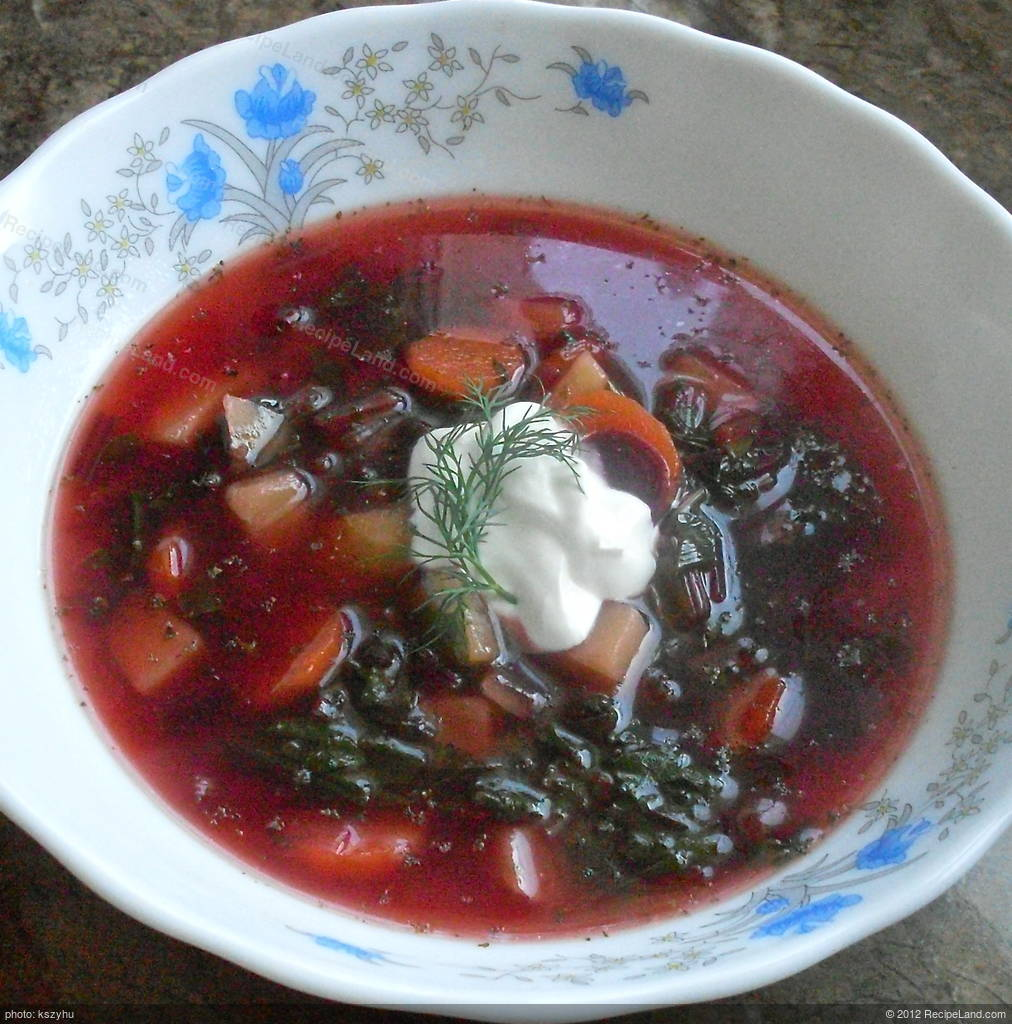 Spring Beet Soup Polish Botwina Recipe