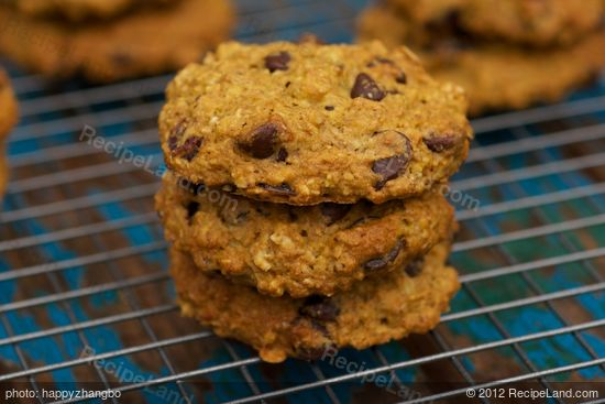 Pumpkin Oatmeal Chocolate Chip and Cranberry Cookies recipe
