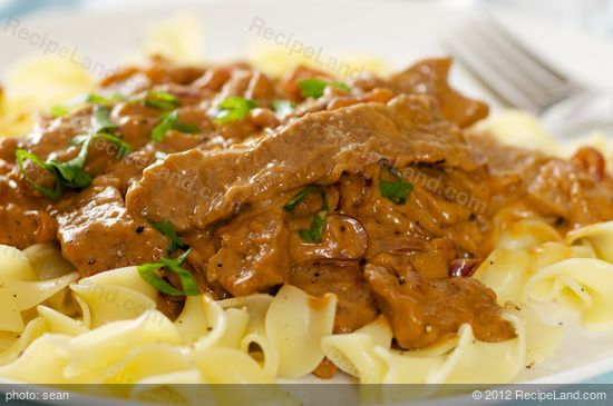 Steak Strips and Onions