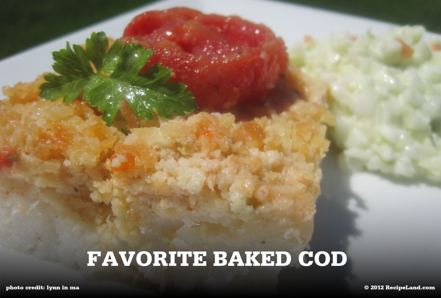 Cod fillets about nutrition data and 81 recipes for Cod fish fillet recipes