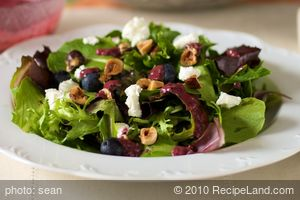 Blueberry Hazelnut Salad with Balsamic Berry Vinaigrette
