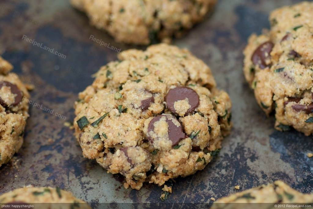 fresh mint chocolate chip cookies recipe