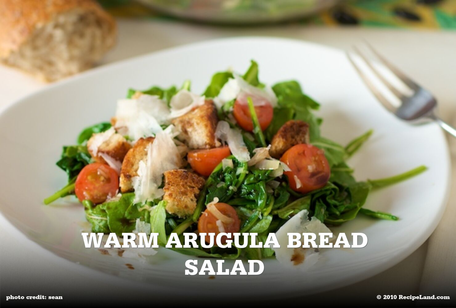 Warm Arugula Bread Salad