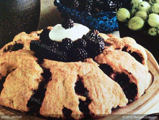 Blackberry Roly-poly Recipe | RecipeLand.com