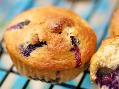 Moist Blueberry Coffee Cake Muffins (Low Fat)