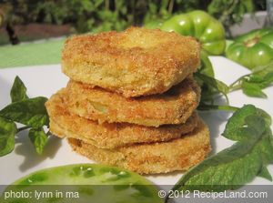 The Best Fried Green Tomatoes