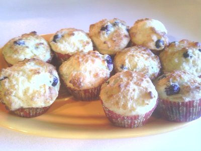 Vegan Blueberry Yogurt Muffins