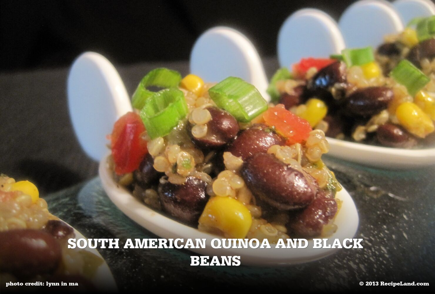 South American Quinoa and Black Beans