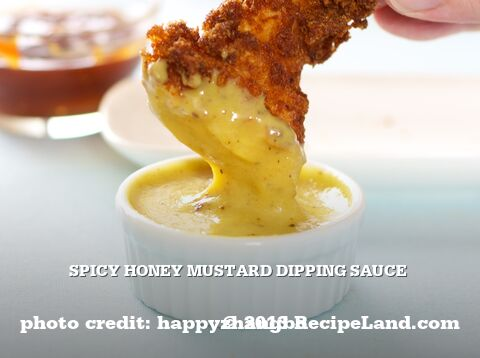 Spicy Honey Mustard Dipping Sauce