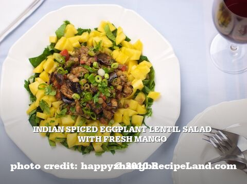 Indian Spiced Eggplant Lentil Salad with Fresh Mango