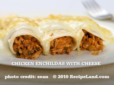 Chicken Enchildas with Cheese