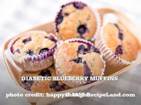 Diabetic Blueberry Muffins
