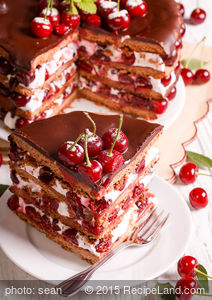 Black Forest Cake No.  4