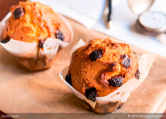 100% Whole Wheat Cranberry Nut Muffins