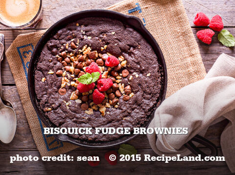 Bisquick Fudge Brownies