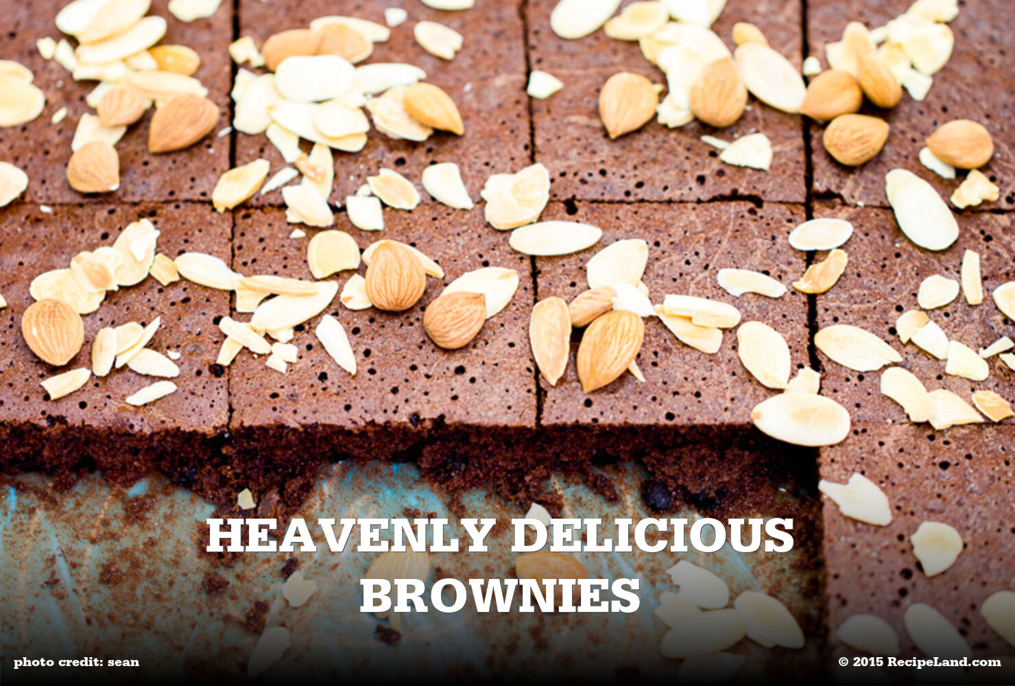 Heavenly Delicious Brownies