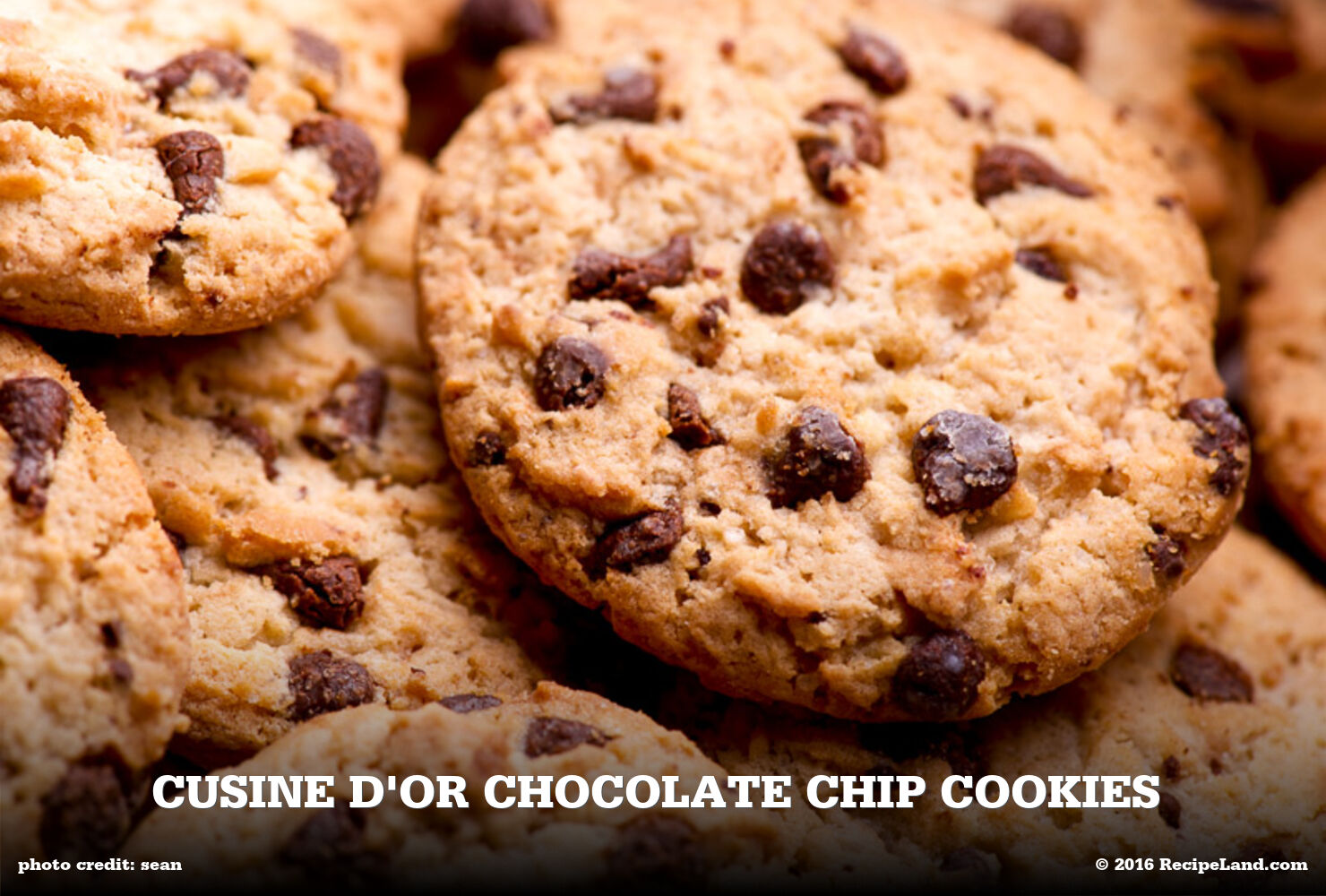 Cusine D'Or Chocolate Chip Cookies