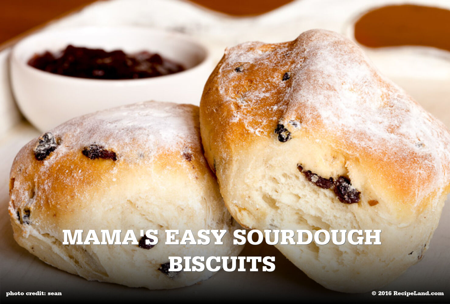 Mama's Easy Sourdough Biscuits