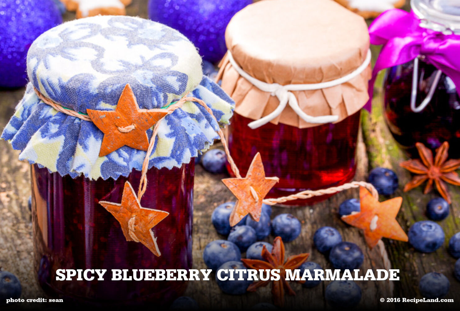 Spicy Blueberry Citrus Marmalade
