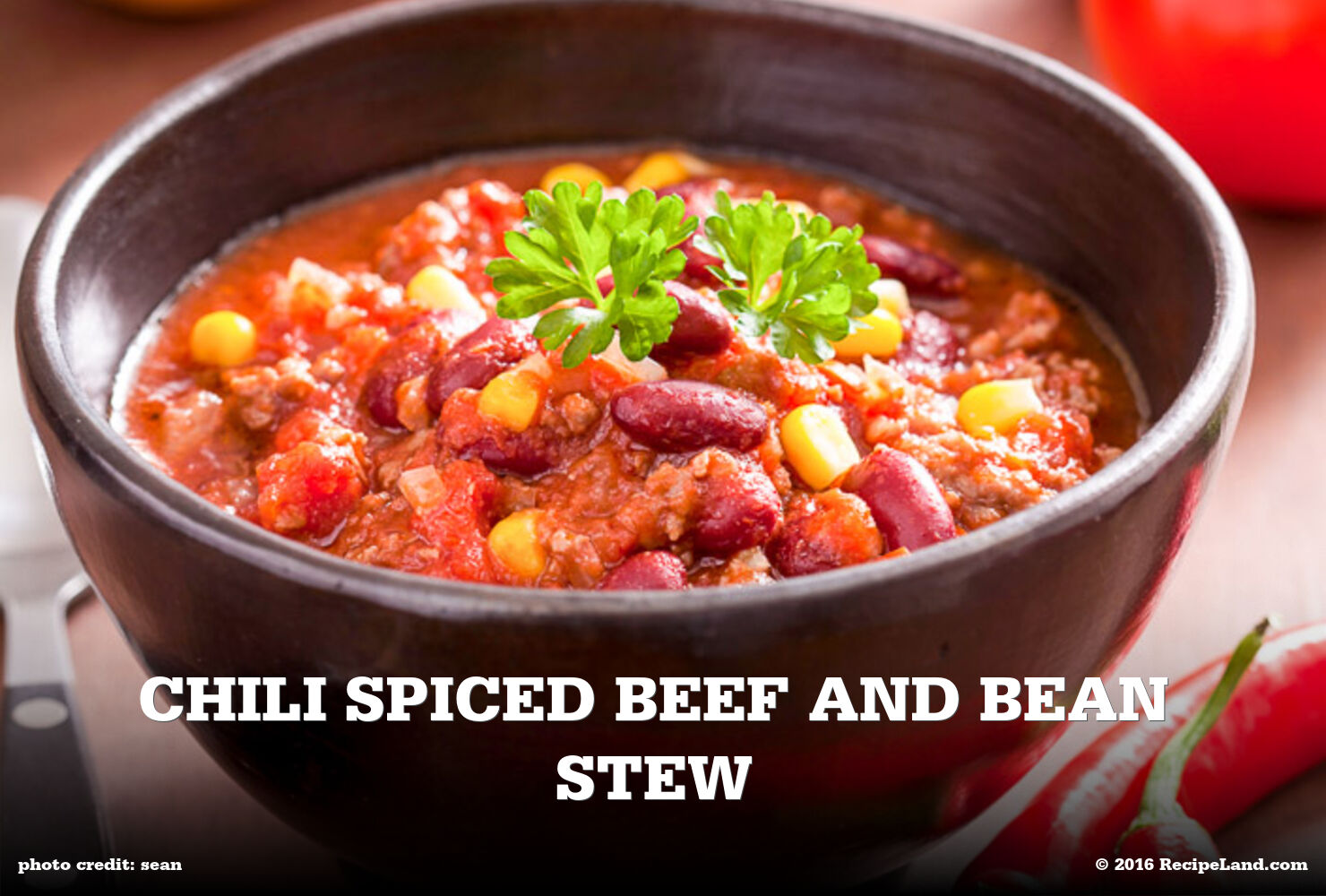 Chili Spiced Beef and Bean Stew