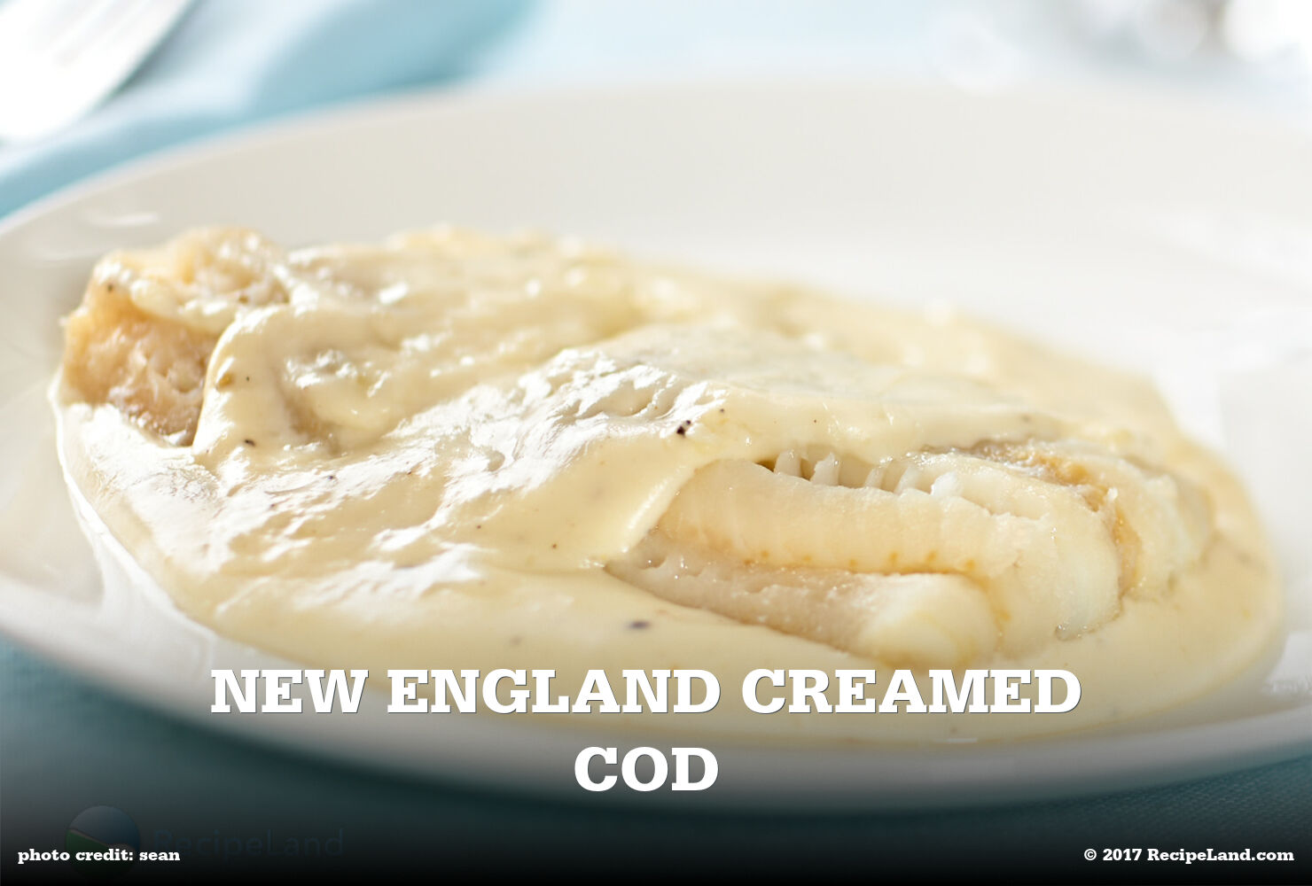 New England Creamed Cod
