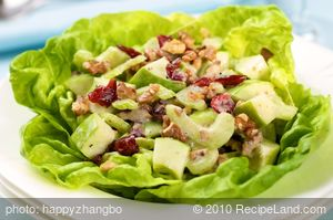Apple, Celery and Cranberry Salad with Creamy Lemon Vinaigrette