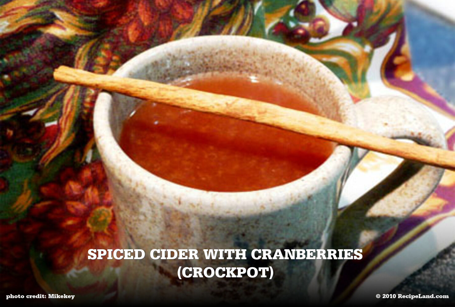 Spiced Cider with Cranberries (crockpot)