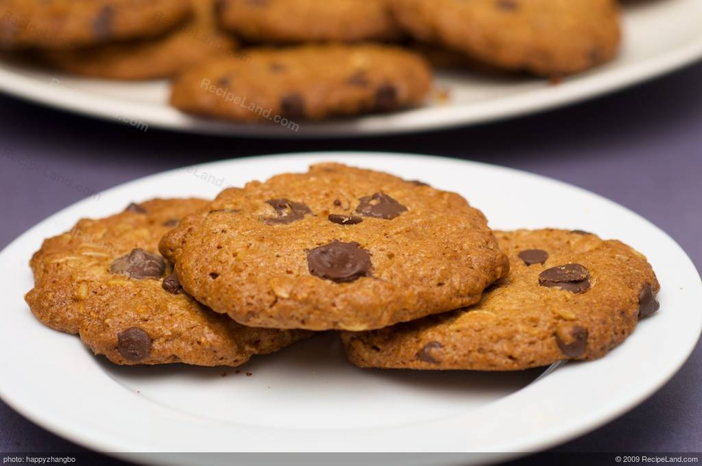 Low fat and low calorie oatmeal chocolate chip cookies recipe for Low fat chocolate biscuits