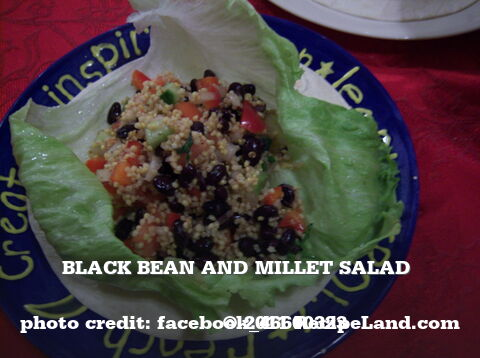 Black Bean and Millet Salad