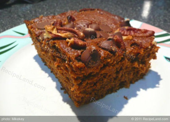 Picnic Chocolate Applesauce Cake