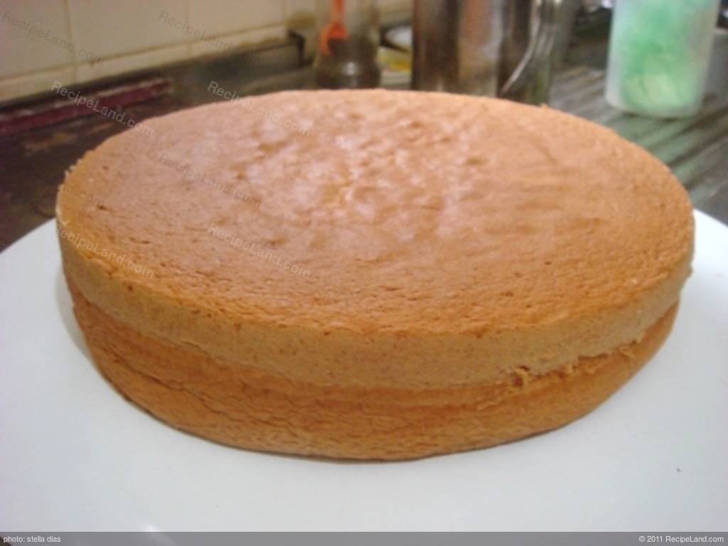 Homemade Sponge Cake Recipe Recipeland Com