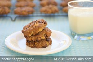 Quaker Choc-Oat-Chip Cookies