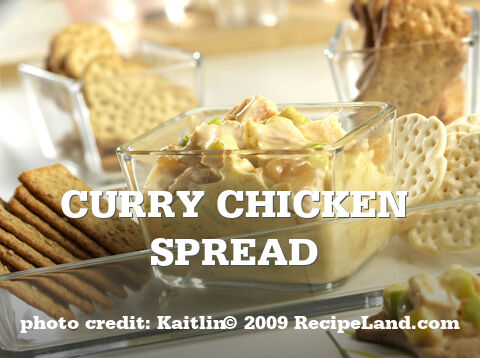 Curry Chicken Spread