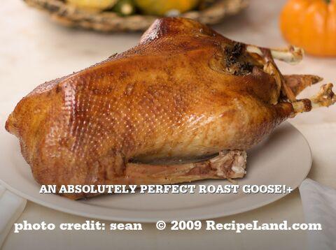 An Absolutely Perfect Roast Goose!+