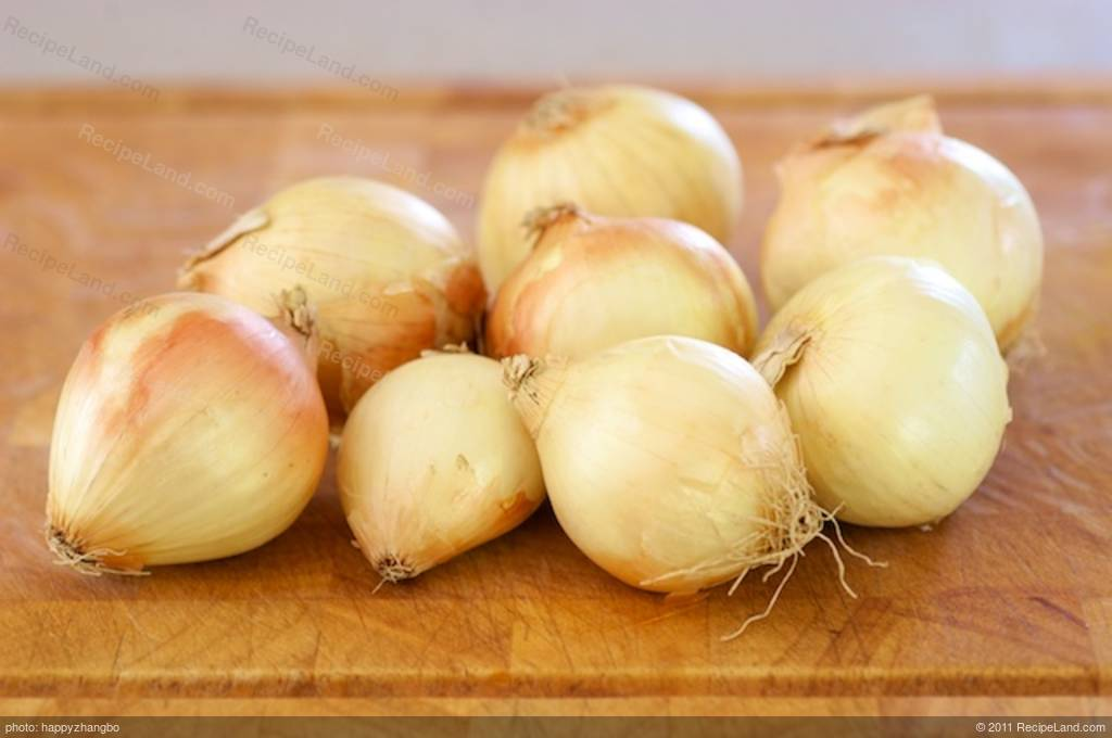 how to grow vidalia onions