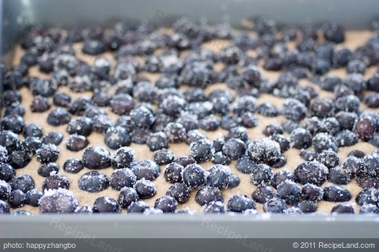 Spread the blueberries over the batter evenly.