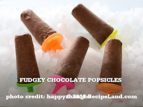 Fudgey Chocolate  Popsicles